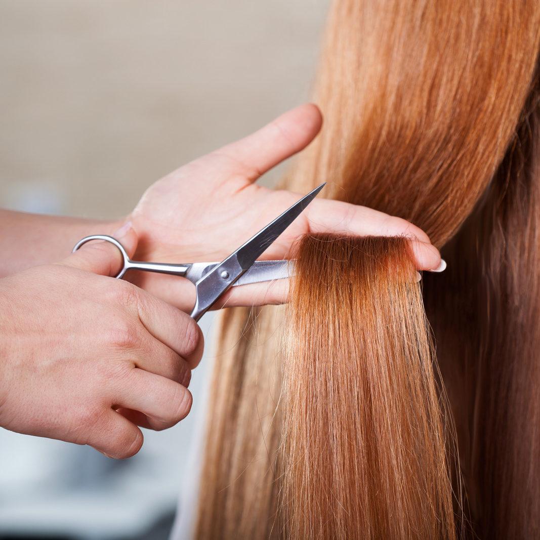 Professional hairdresser cutting long woman's hair